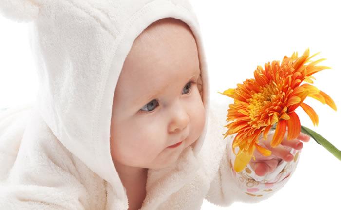 Plantes pour augmenter sa fertilité