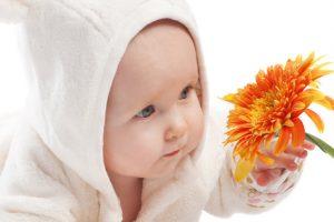 Top 10 des plantes pour augmenter sa fertilité.